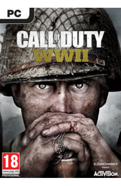 PC Call of Duty: WWII Disk