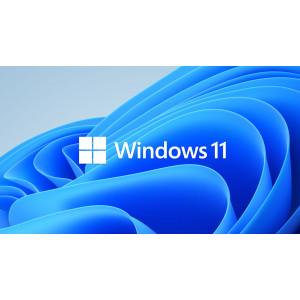 WINDOWS 11 PRO